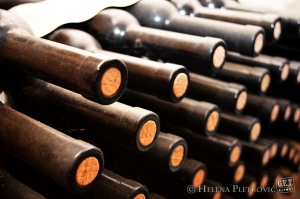 Photo of the Day: Inside the Krauthaker Cellars