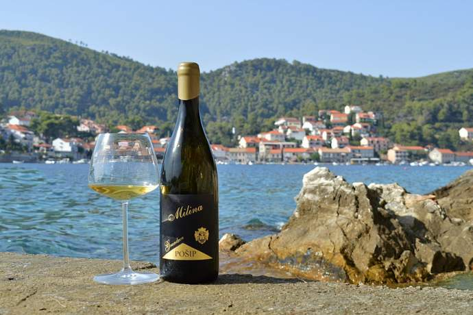 Seventh Days of Pošip on Korčula Island
