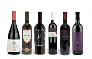 Wine and More Special Packages: Istrian Red Wine Case