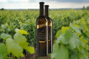 Wine of the Week: Graševina Premium 2015 by Jasna Antunović