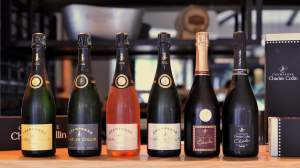 Vinolog Presents Charles Collin Champagnes